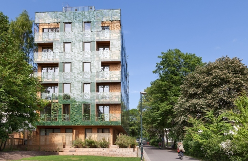 Greenhouse D36, Element Arkitekter AS, Oslo Norway, 2013 © ANA architecten